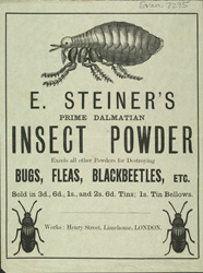 Advert For E. Steiner's Insect Powder
